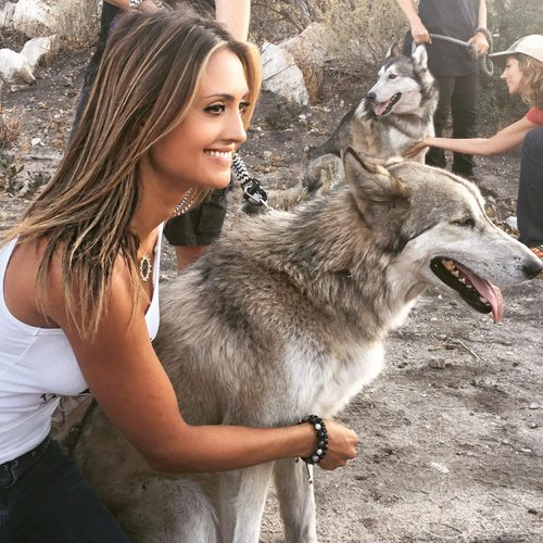 Katie Cleary Saving Dogs
