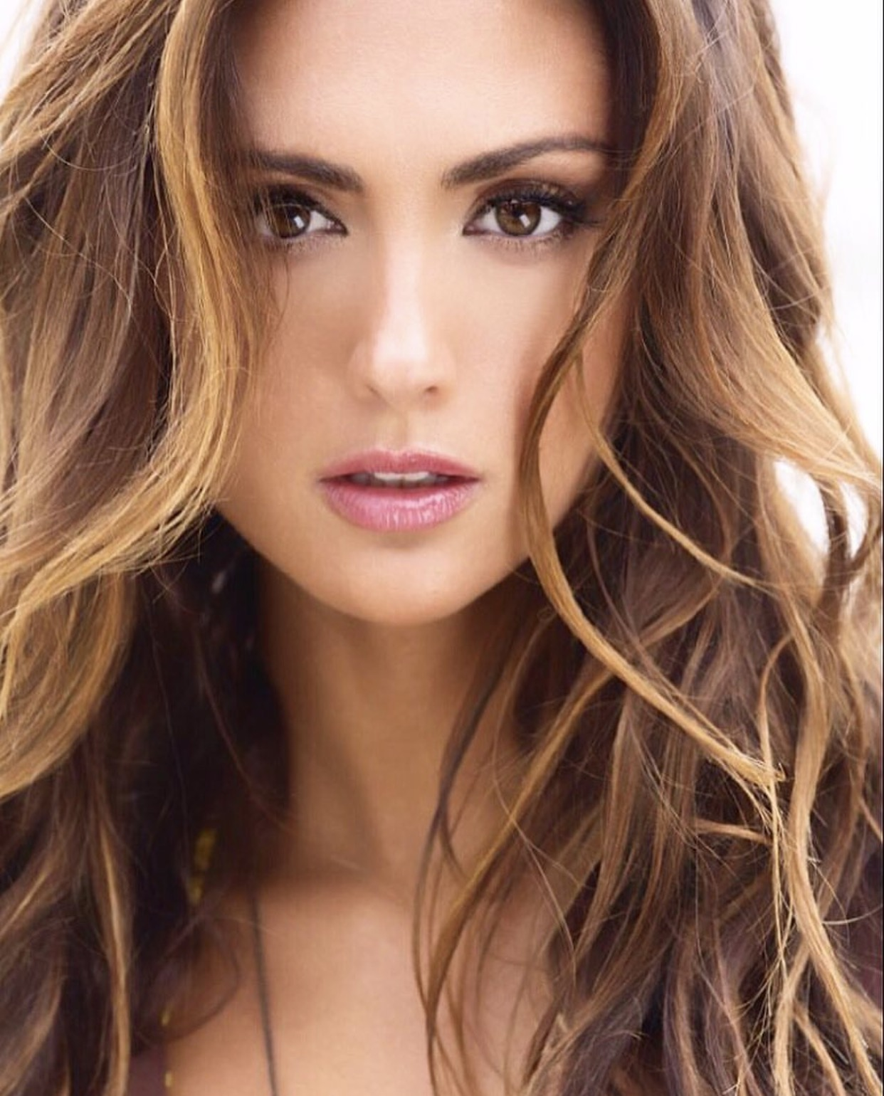 Katie Cleary Profile