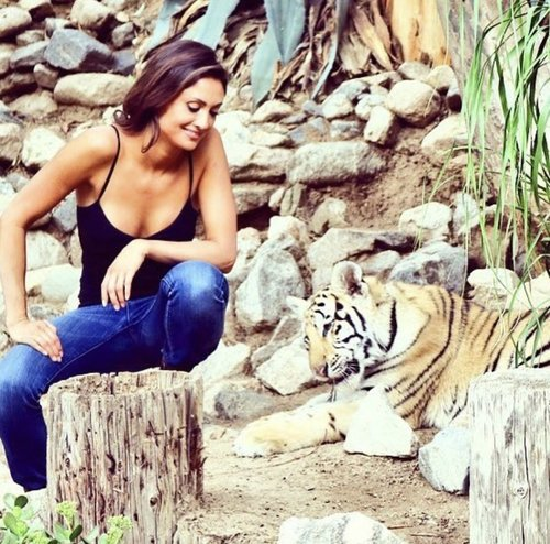 Katie Cleary For Tigers